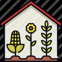 crops, easy farming, farm, farming, home, home farming icon