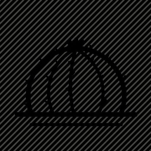 cactus, flowerpot, line icon icon