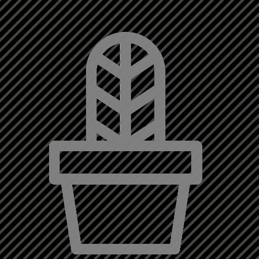 cacti, leaf, plant, pot, succulent icon