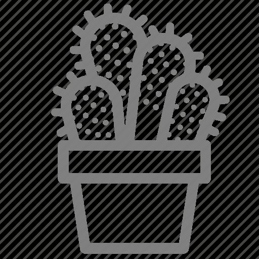 cacti, desert, flower pot, plant, pot, prickles, succulent icon