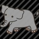 elephant, animal, mammal, wildlife, jungle