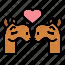 camel, zoo, animal, wildlife, kiss