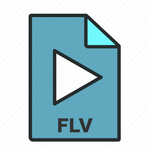 camera, codec, file, filled, flash video, format icon