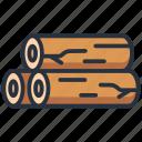 log, tree, wood