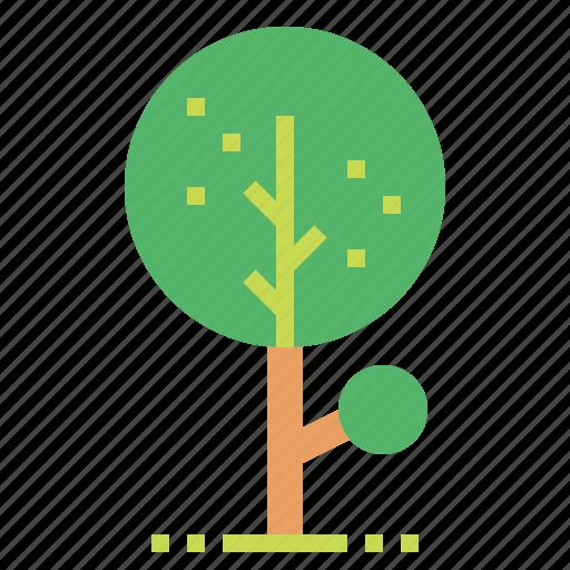 botanical, nature, tree icon