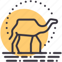 adventure, camel, desert, ride, tourism, travel, vacation icon