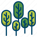 forest, landscape, nature, outdoor, park, plant, tree