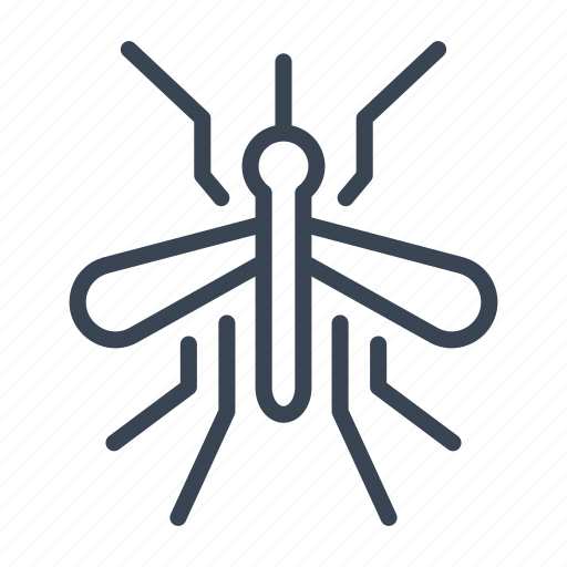 Bug, insect, mosquito icon - Download on Iconfinder