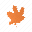 canada, cartoon, color, design, leaf, maple, orange