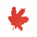 canada, cartoon, color, design, leaf, maple, red