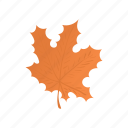 canada, cartoon, color, design, leaf, maple, orange icon