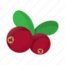 berry, bright, cartoon, cranberry, fruit, healthy, object