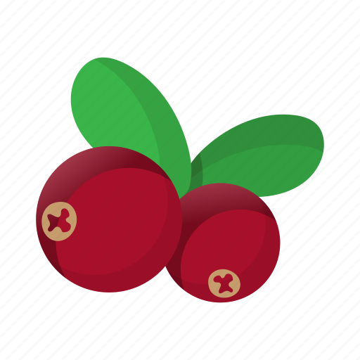 berry, bright, cartoon, cranberry, fruit, healthy, object icon