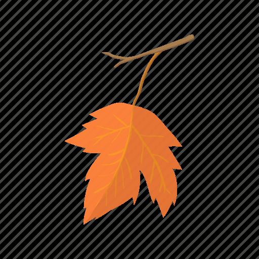 canada, canadian, cartoon, fall, leaf, nature, vector maple icon