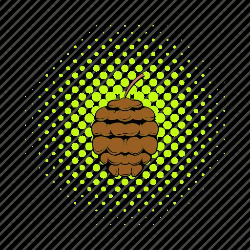 brown, cedar, comics, cone, coniferous, evergreen, nature icon