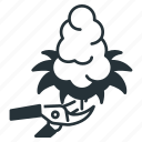harvesting, bud, cannabis, flower, marijuana, plant, trim icon