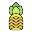 food, fruit, healthy, nature, organic, pineapple icon