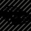 car, travel, modern, sport, transportation icon