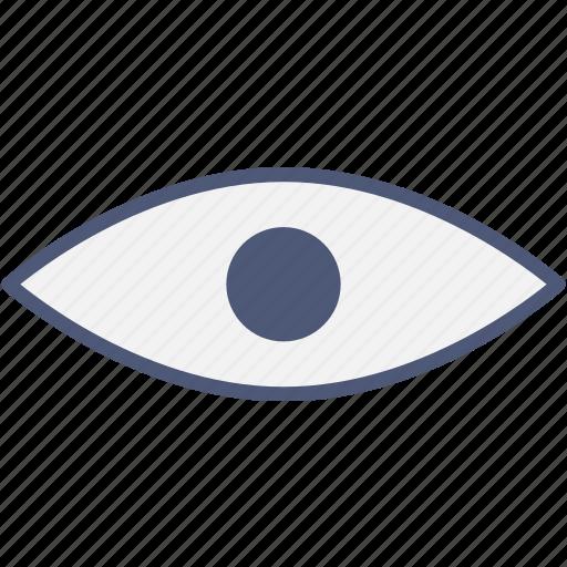 check, eye, view icon