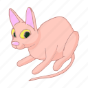 animal, cartoon, cat, cute, kitten, lovely, pet icon