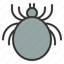 cat, flea, parasite, tick icon