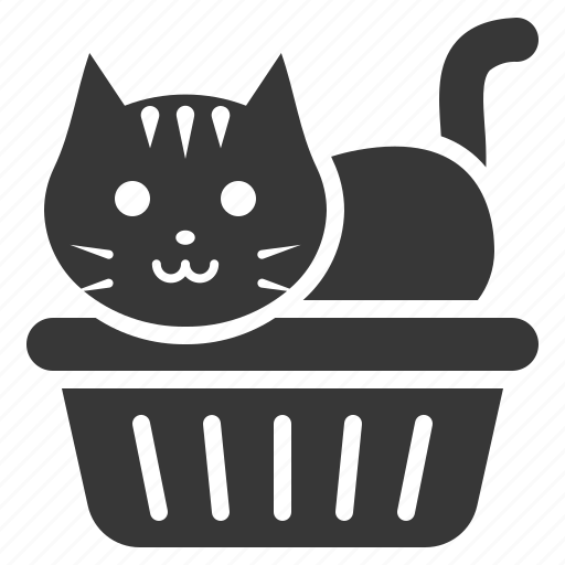 cat, cat litter box, litter box, pet icon
