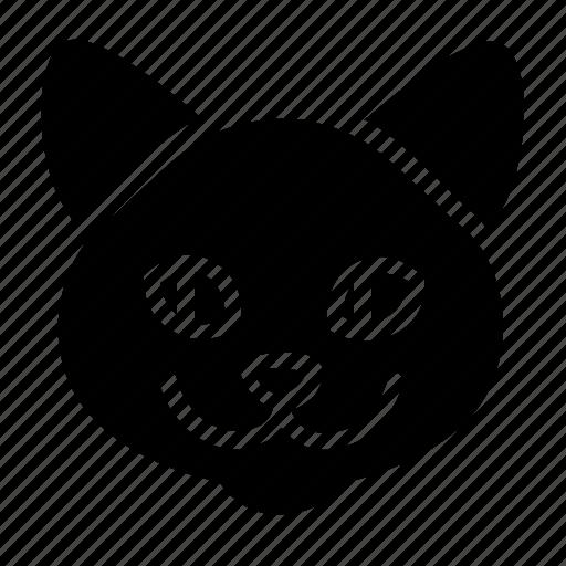 adult, animal, cat, head, pet icon