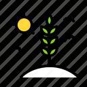 flower, landscape, life, plant