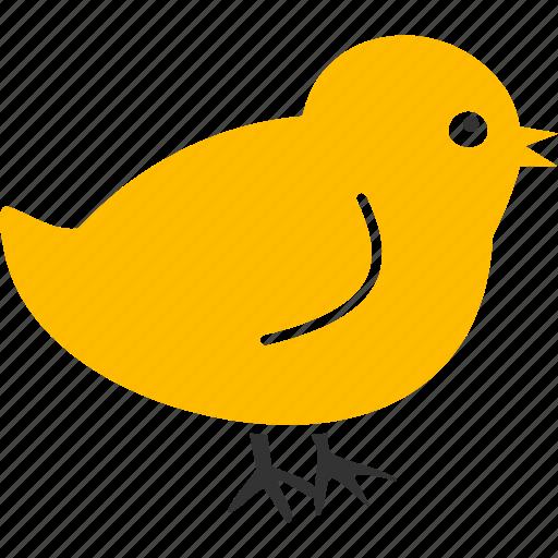 baby, bird, chick, chicken, nestling, new, small icon