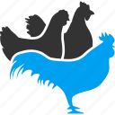 agriculture, chicken, chikens, cock, farm, rooster, village icon