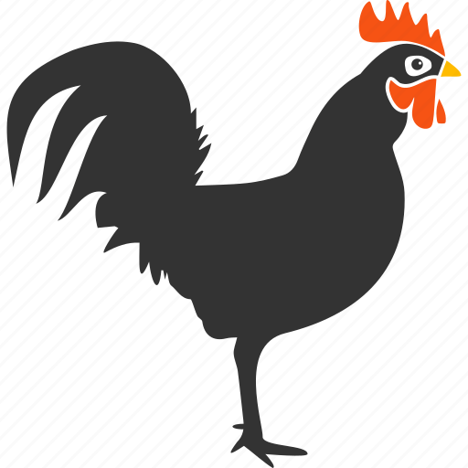 agriculture, bantam, bird, chicken, cock, hen, rooster icon