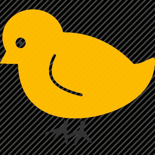 baby, bird, chick, chicken, child, nestling, new icon