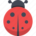 bug, colorful, insect, ladybug icon