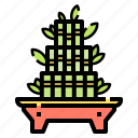 bamboo, botanic, gardening, lucky, nature, plant, tree
