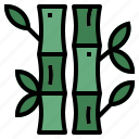 bamboo, botanical, nature, plant icon