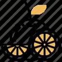 chinese, fruit, lemon, orange icon