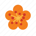chinese, culture, floral, flower, nature, plant icon