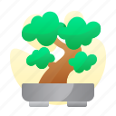 bonsai, chinesse, new, pot, year icon