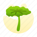 chinesse, leaf, lotus, new, year icon