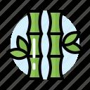 bamboo, green, new, year, chinese