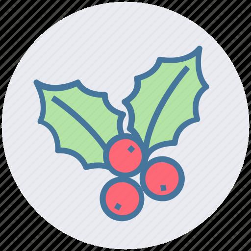 berry, celebration, christmas, holly, mistletoe, poinsettia icon