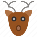 deer, face, hunt, hunting icon