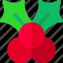 mistletoe, prize, winter, xmas icon