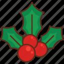 christmas, mistletoe, xmas