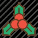 berry, christmas, holidays, holly, mistletoe
