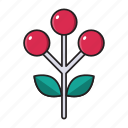 berries, cherries, christmas, food, fruit icon