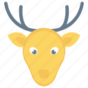 christmas, decoration, reindeer, xmas icon icon