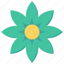 blossom, decoration, flower, petals icon
