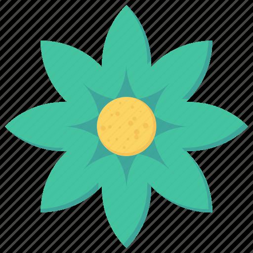 blossom, decoration, flower, petals icon