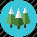 christmas, pines, tree icon